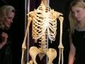 4567084-praha-vystava-the-human-body-exhibition-9_galerie-980